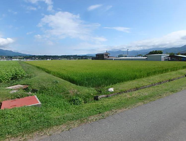 飯島 3112㎡ 3760万円