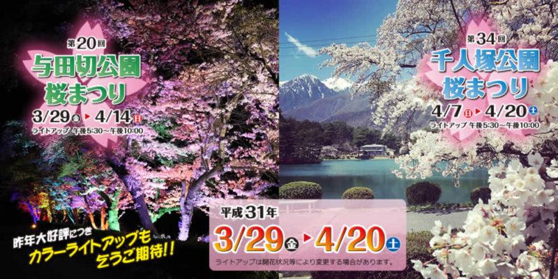 2019信州いいじま桜まつり開催中!