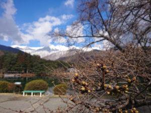 千人塚公園の写真です。