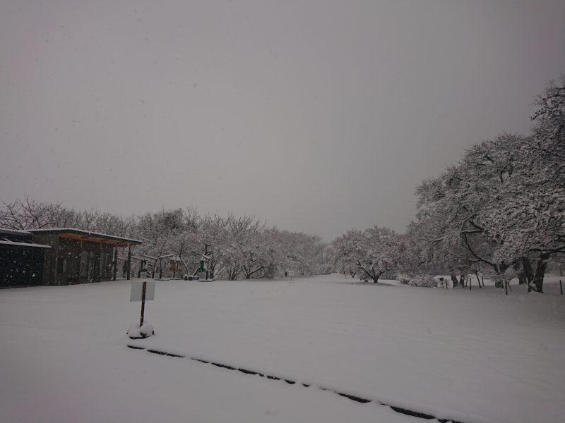 【与田切公園・千人塚公園】2019年4月10-11日:大雪に伴う営業休止のお知らせ